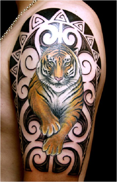 orange color tiger with Maori tattoo on man's left arm.
