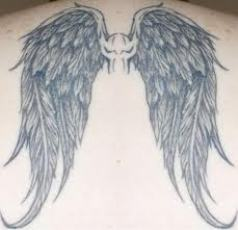 The huge wings tattoo at the back.